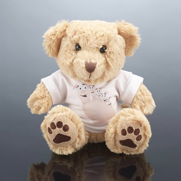 Picture of Teddy Bear Plain 25cm